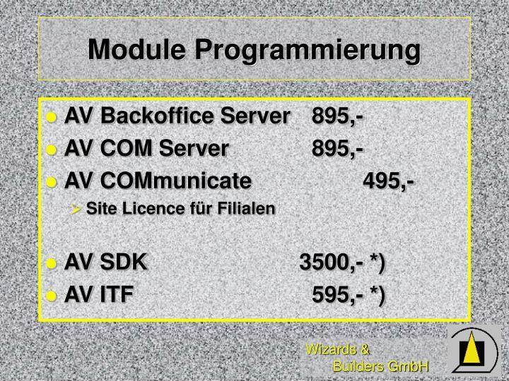 Module Programmierung