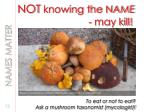 not knowing the name may kill