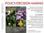 policy decision making