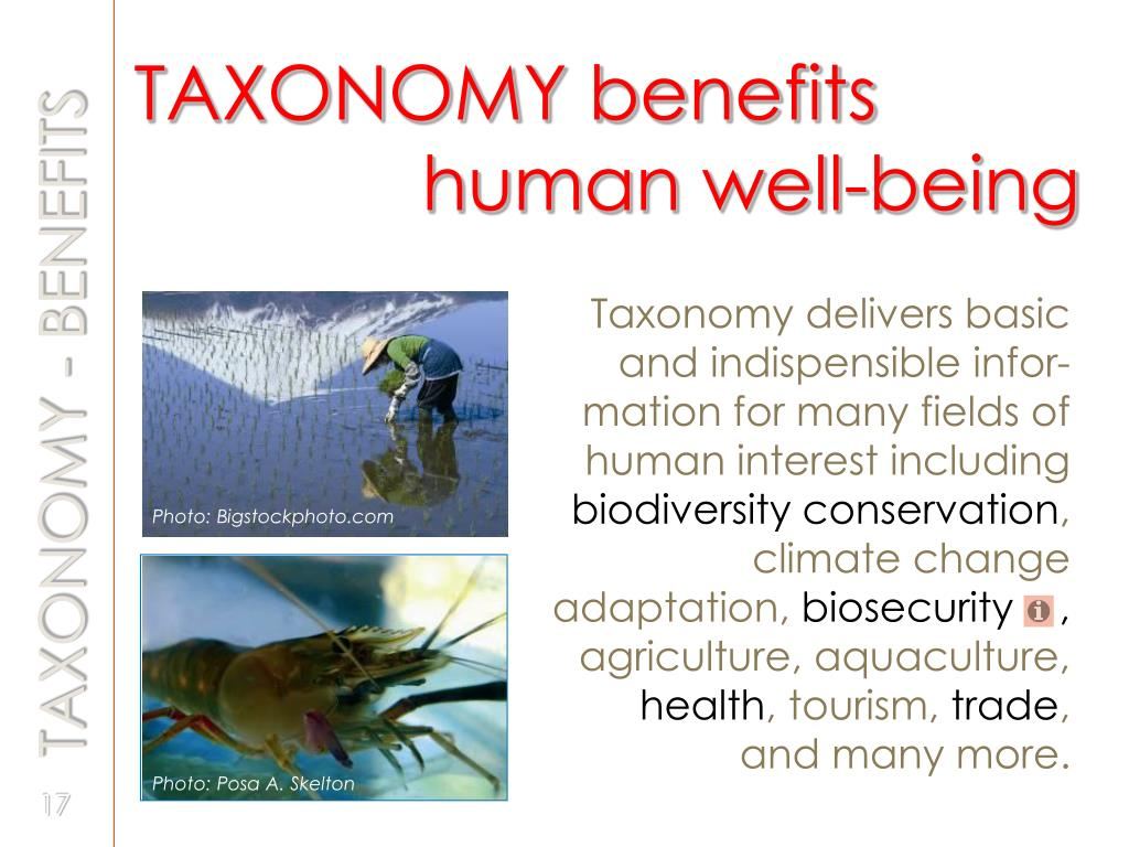 TAXONOMY benefits     	 		   human well-being