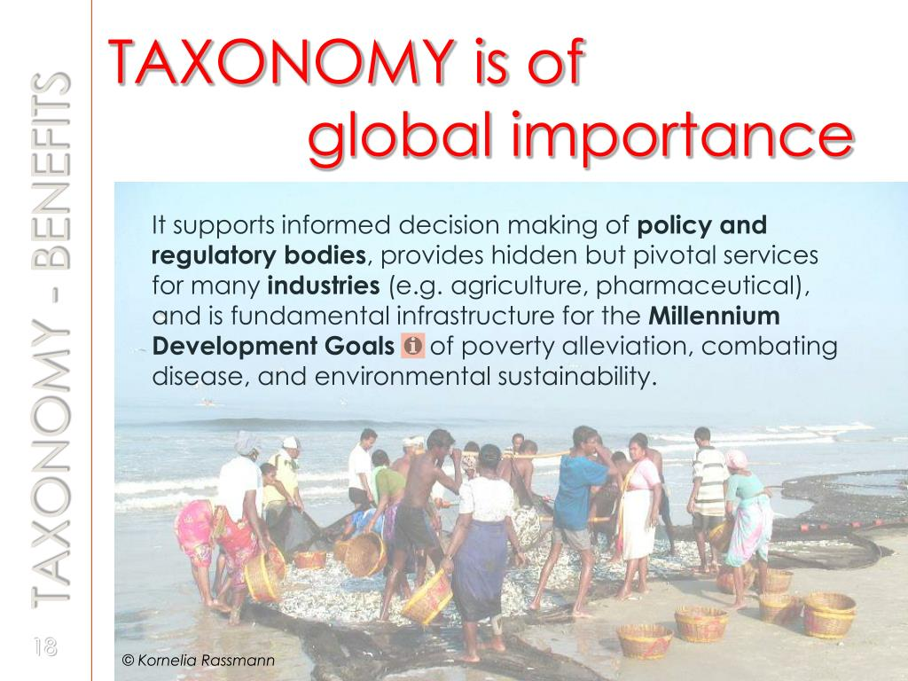 TAXONOMY is of