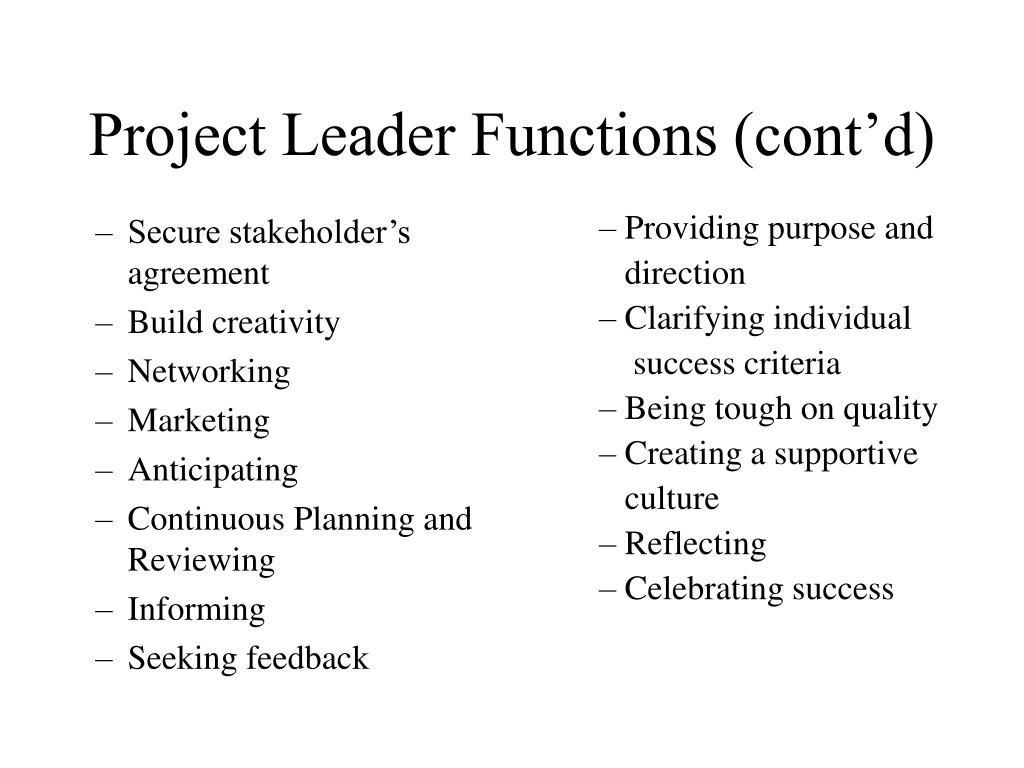 Project Leader Functions (cont'd)