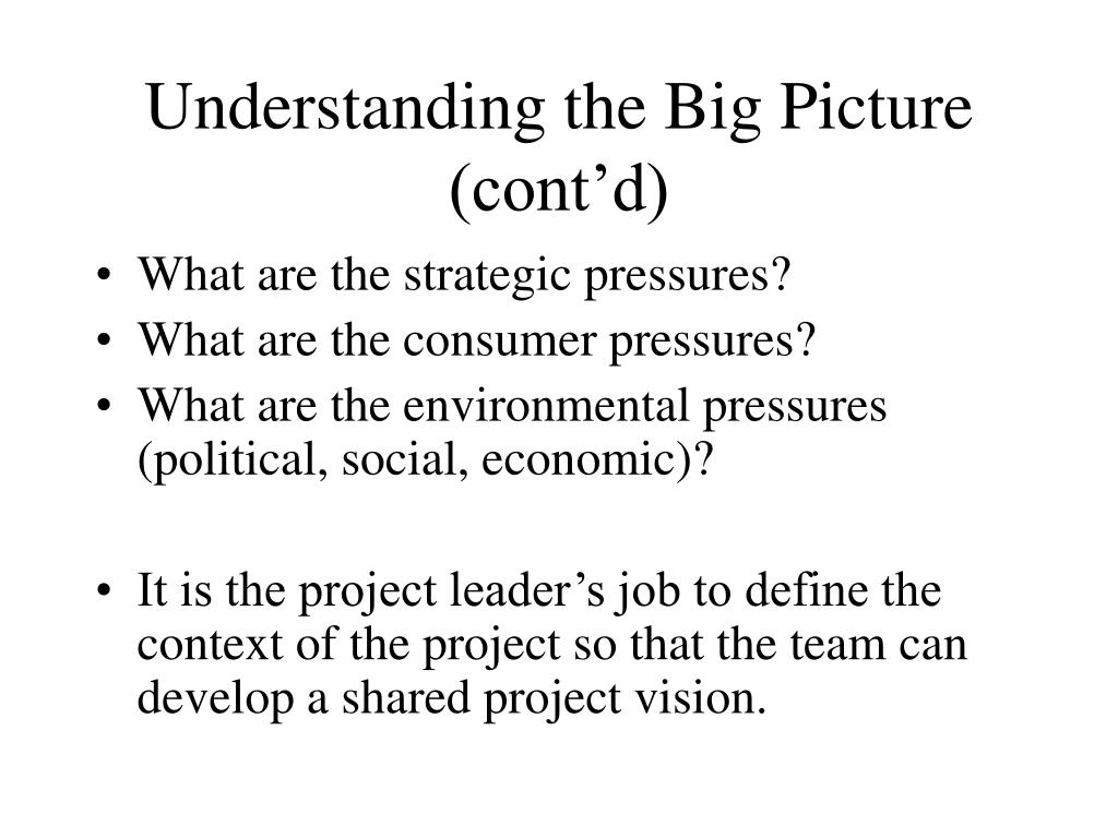 Understanding the Big Picture (cont'd)