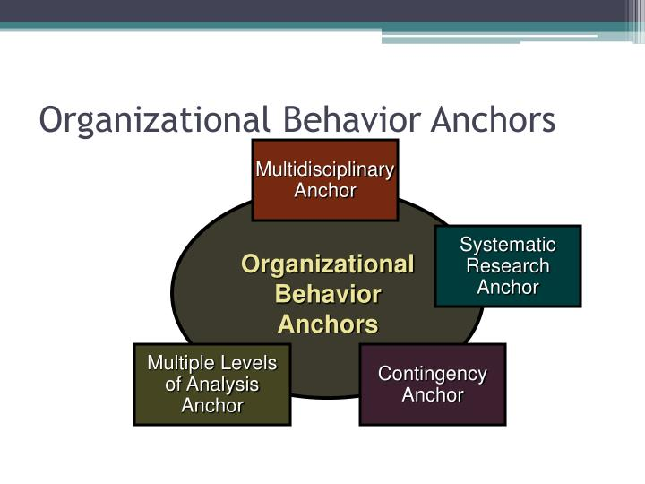 Organizational Behavior Anchors