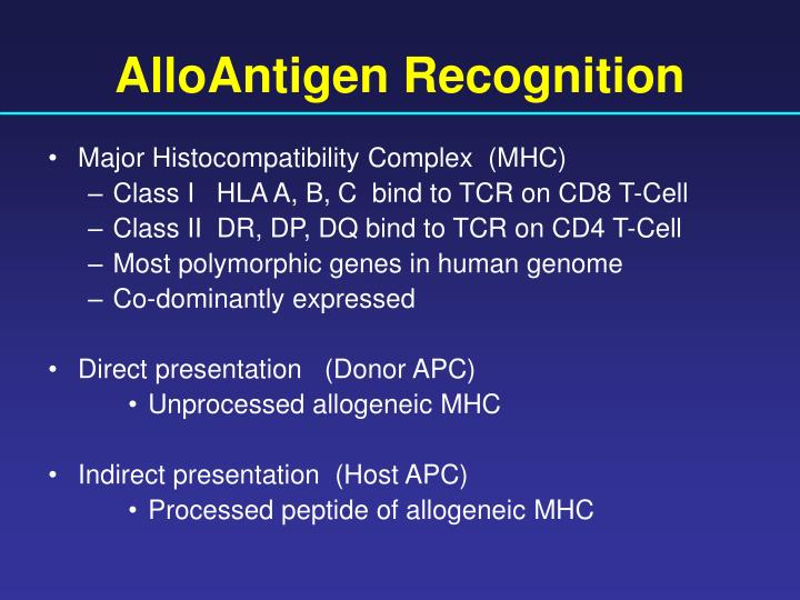 AlloAntigen Recognition