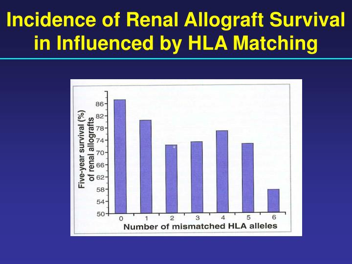 Incidence of Renal Allograft Survival in Influenced by HLA Matching