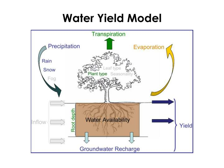 Water Yield Model