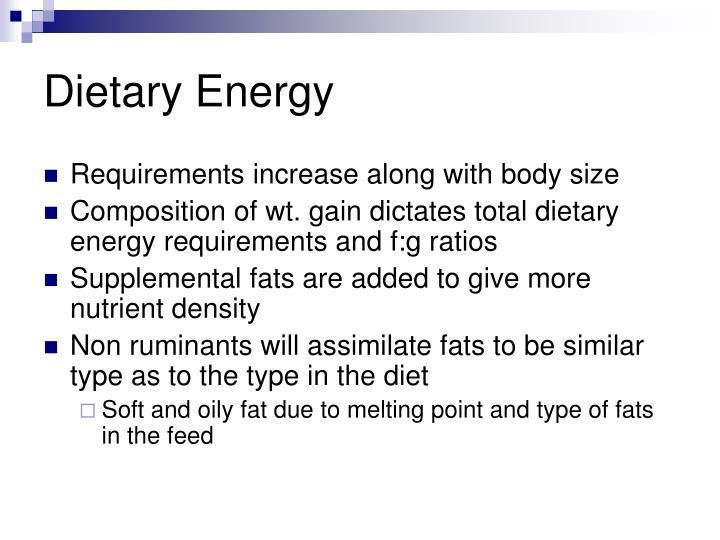 Dietary Energy