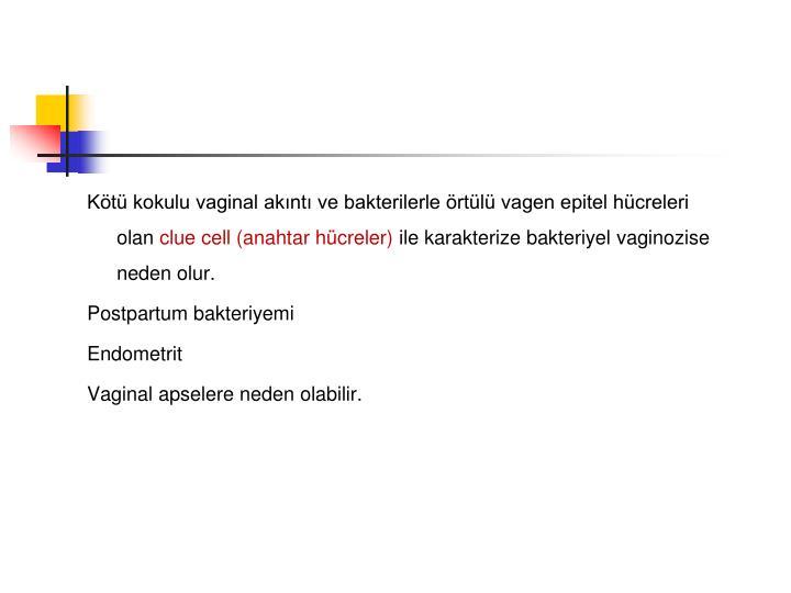 Kötü kokulu vaginal akıntı ve bakterilerle örtülü vagen epitel hücreleri olan