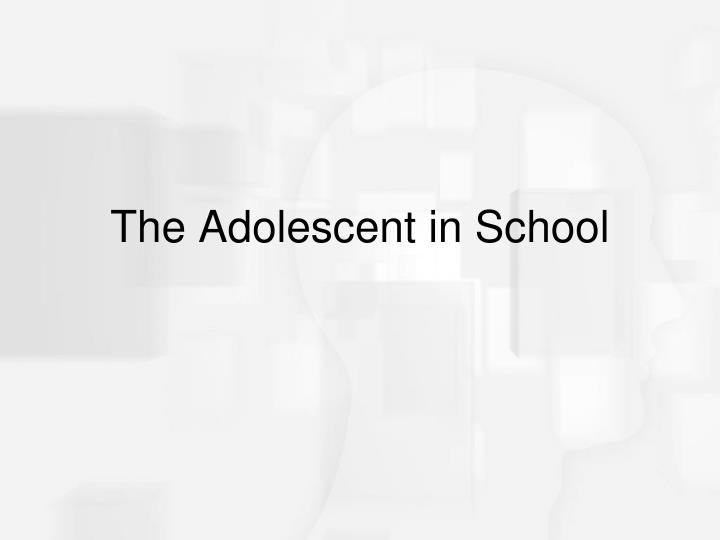 The Adolescent in School