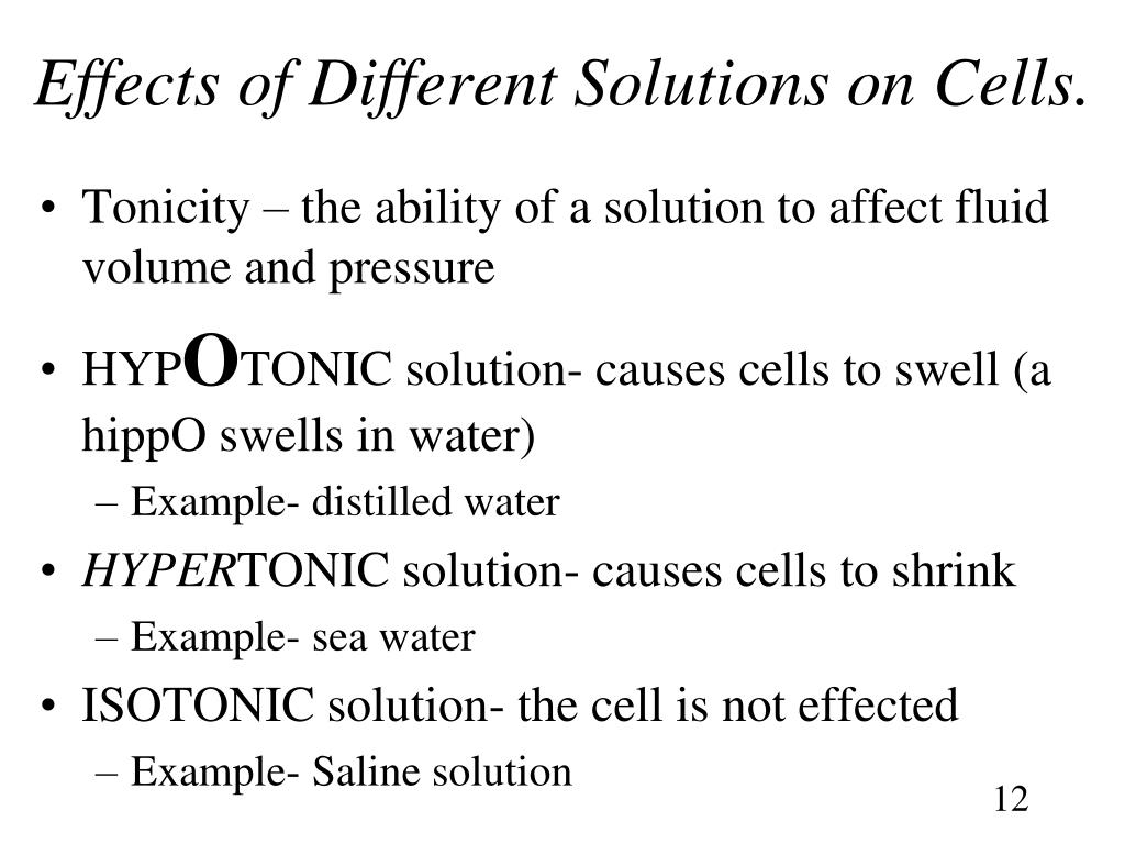 Effects of Different Solutions on Cells.