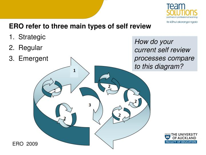 ERO refer to three main types of self review