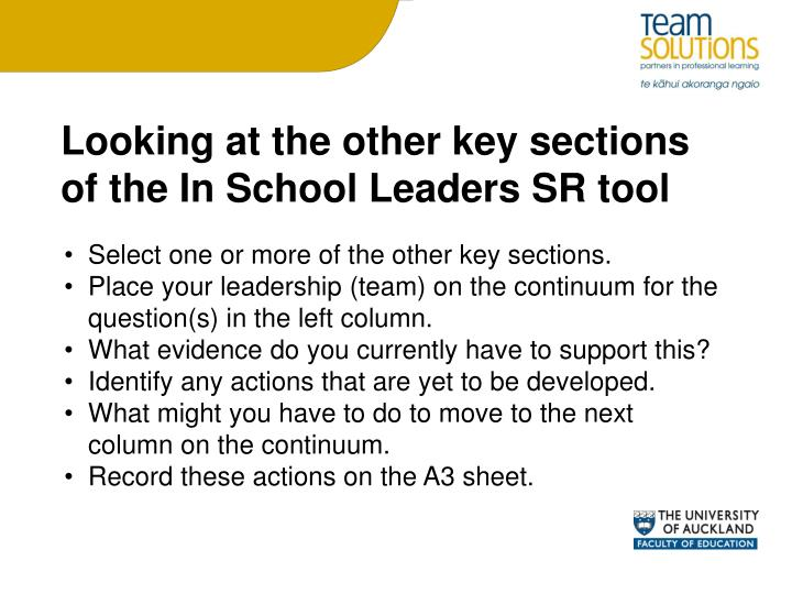 Looking at the other key sections of the In School Leaders SR tool
