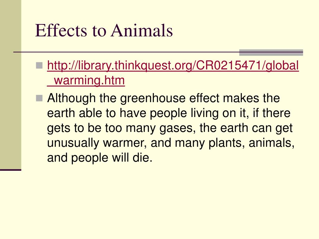Effects to Animals