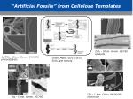 artificial fossils from cellulose templates