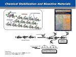 chemical stabilization and bioactive materials
