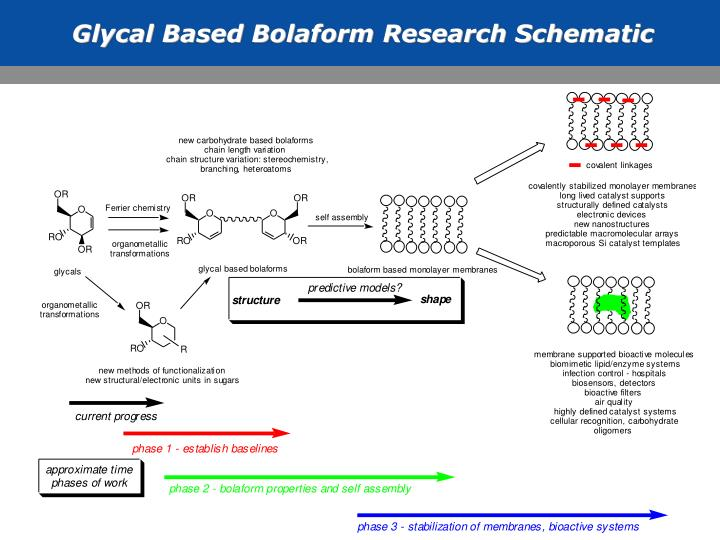 Glycal Based Bolaform Research Schematic