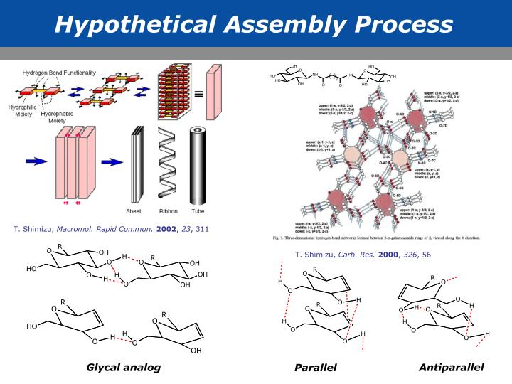 Hypothetical Assembly Process