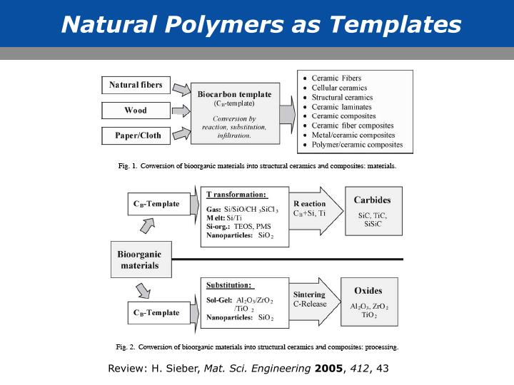 Natural Polymers as Templates