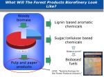 what will the forest products biorefinery look like