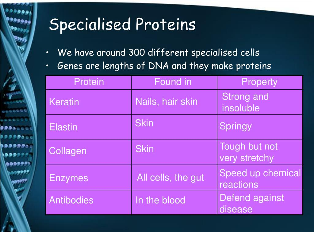 Specialised Proteins
