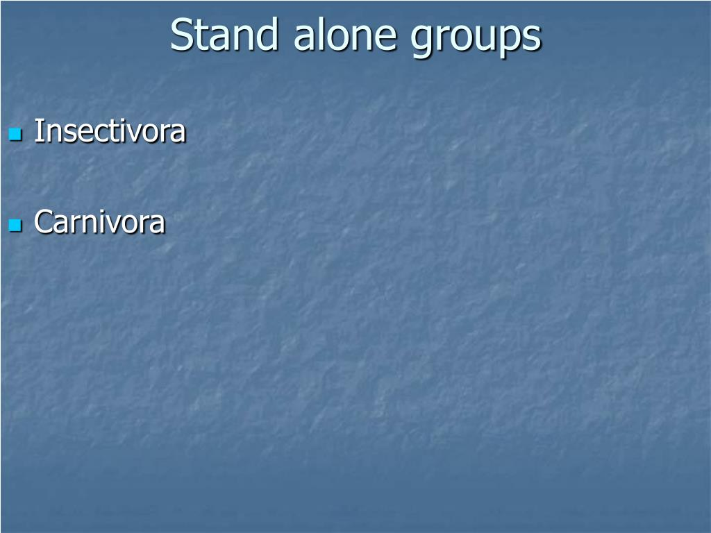 Stand alone groups