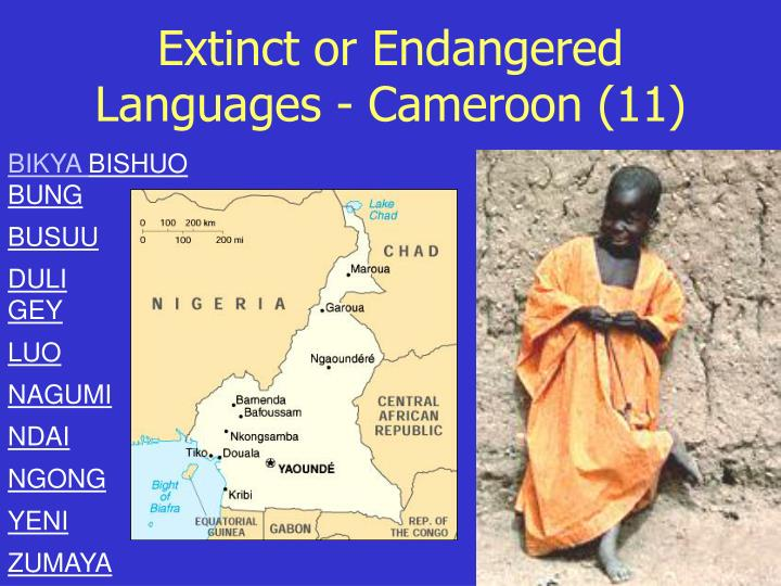 Extinct or Endangered Languages - Cameroon (11)