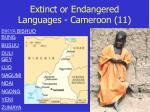 extinct or endangered languages cameroon 11