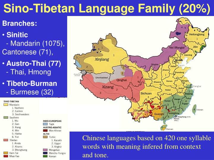 Sino-Tibetan Language Family (20%)