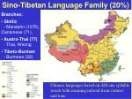 sino tibetan language family 20