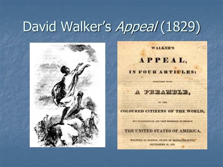 David Walker's