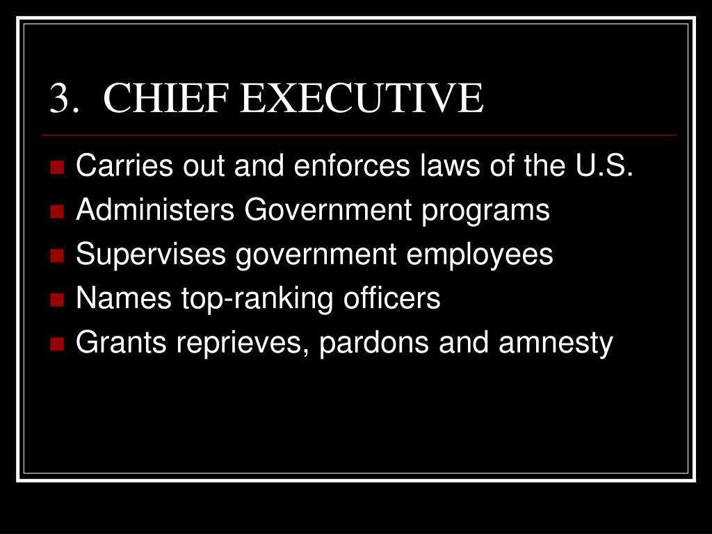 3.  CHIEF EXECUTIVE