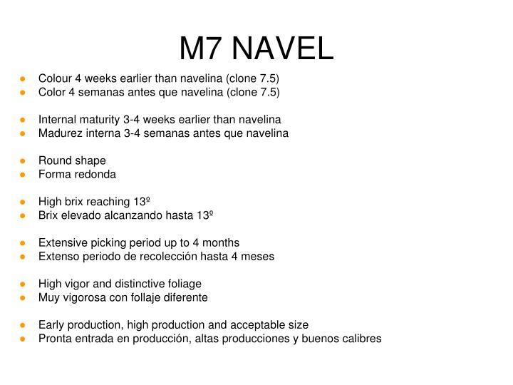 M7 NAVEL