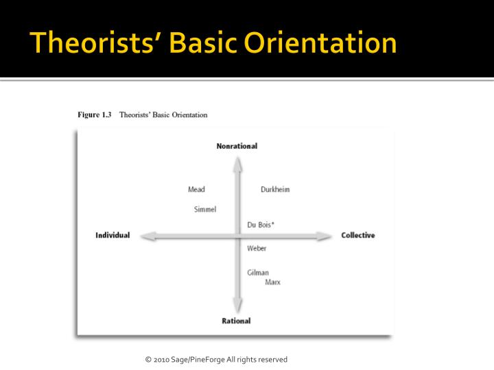 Theorists' Basic Orientation