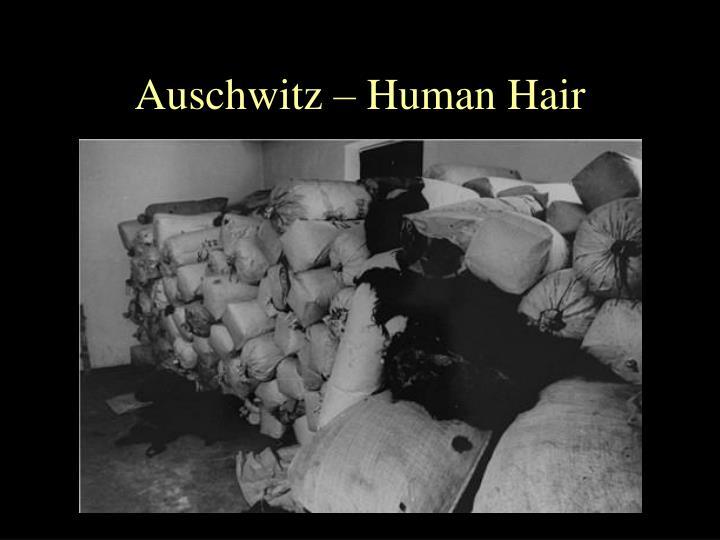 Auschwitz – Human Hair