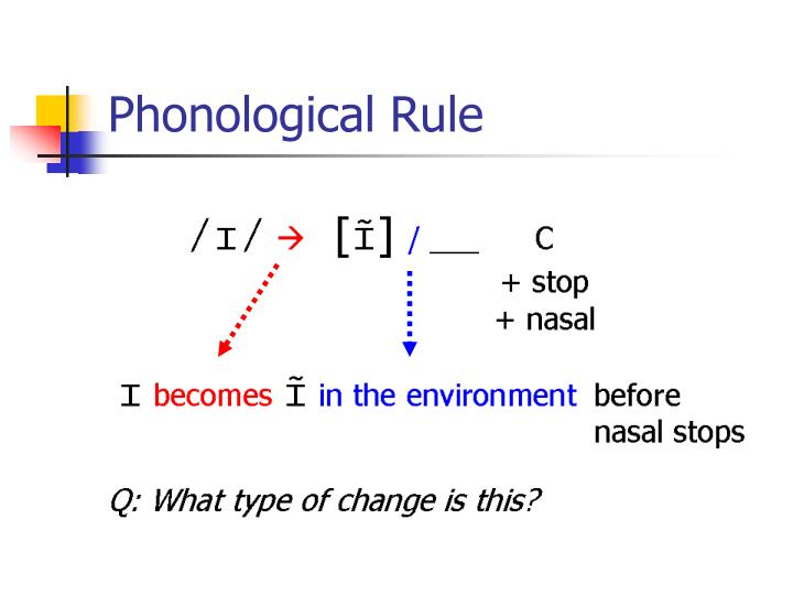 Phonological Rule