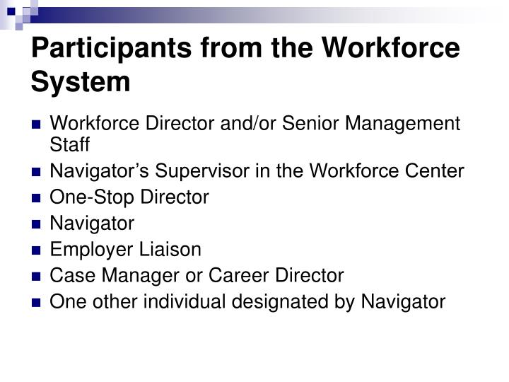 Participants from the Workforce System