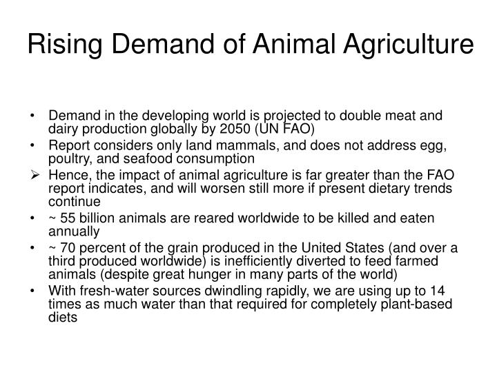 Rising Demand of Animal Agriculture