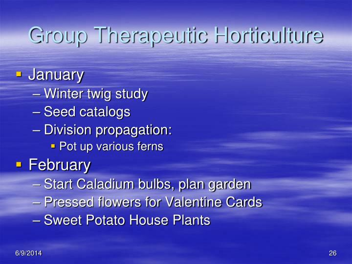 Group Therapeutic Horticulture