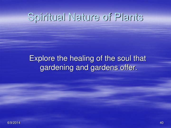 Spiritual Nature of Plants