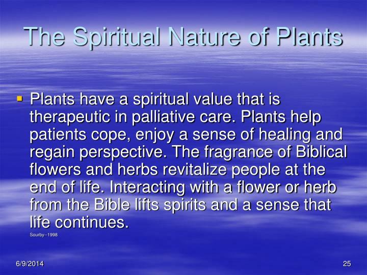 The Spiritual Nature of Plants
