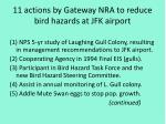 11 actions by gateway nra to reduce bird hazards at jfk airport