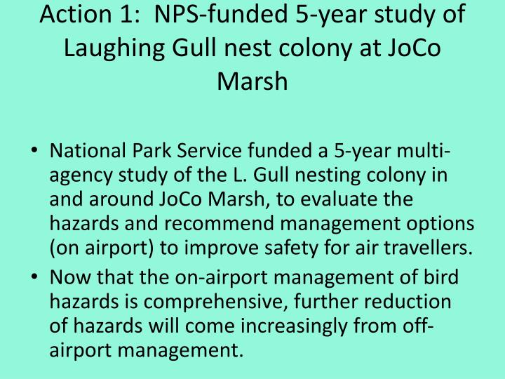 Action 1:  NPS-funded 5-year study of Laughing Gull nest colony at