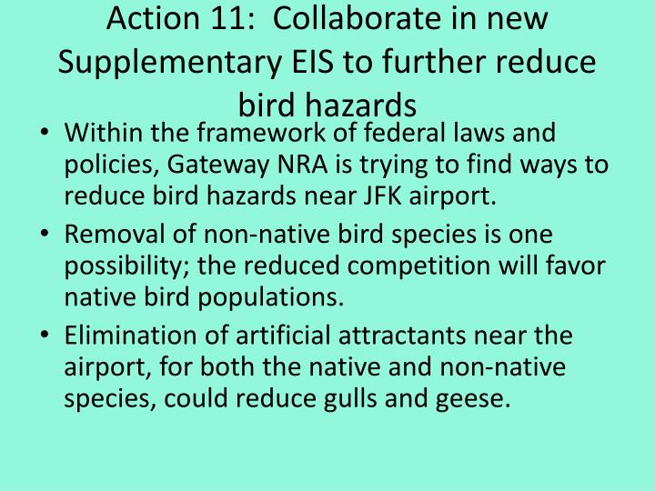Action 11:  Collaborate in new Supplementary EIS to further reduce bird hazards