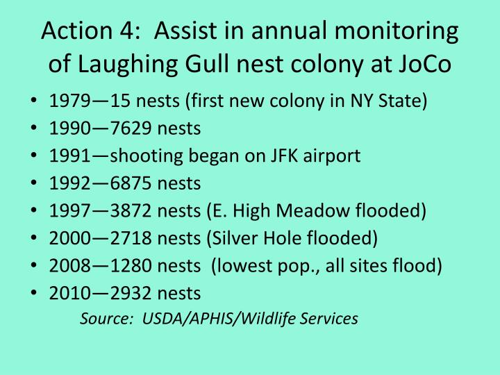 Action 4:  Assist in annual monitoring of Laughing Gull nest colony at