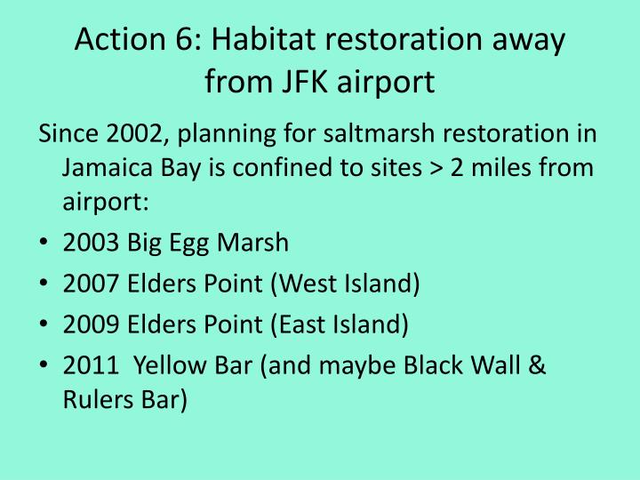 Action 6: Habitat restoration away from JFK airport
