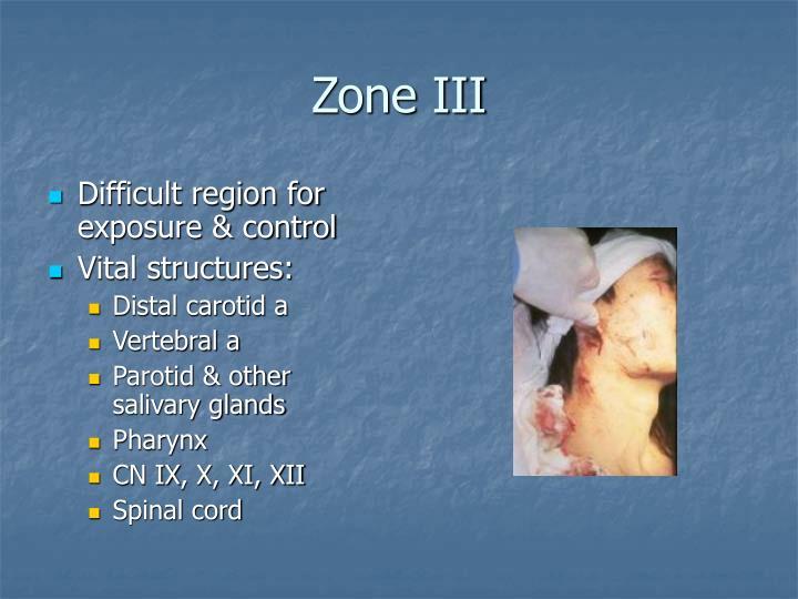 Zone III