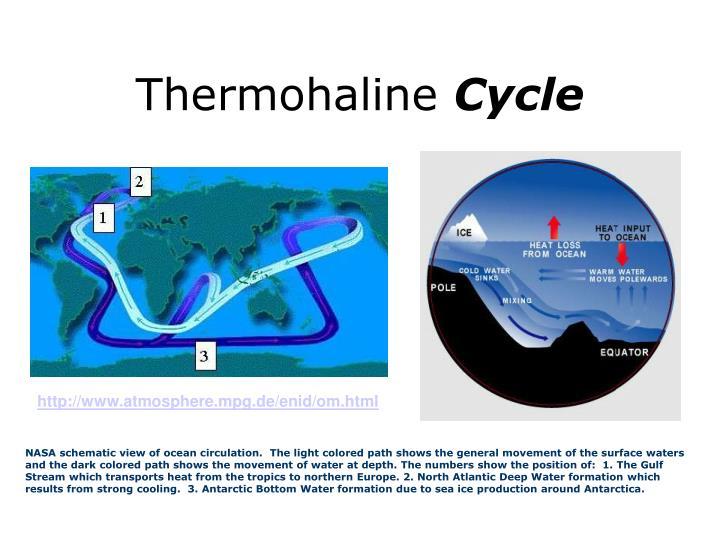 Thermohaline