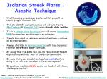 isolation streak plates aseptic technique