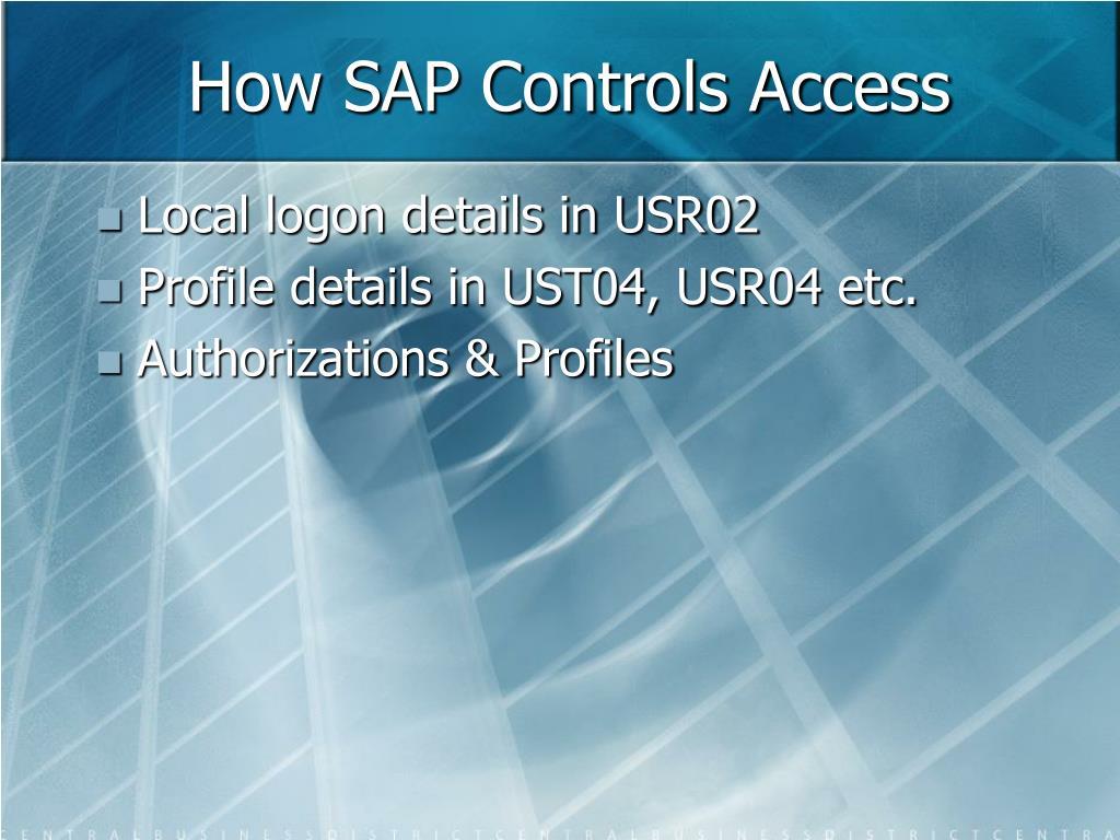 How SAP Controls Access